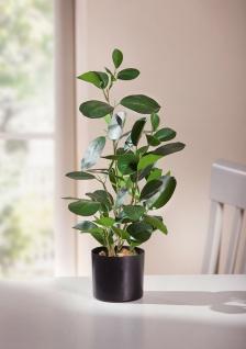 """Kunst Pflanze """" Green"""" im Topf, 48 cm hoch, Büro Zier Zimmer Baum Bäumchen"""