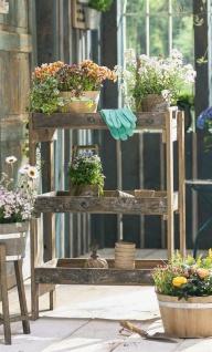 Stand Regal aus recyceltem Holz, 3 Böden, Garten Blumen Pflanzen Ständer