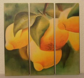"""3 tlg. Bilder Set Stillleben """" Zitrusfrüchte"""", Triptychon Leinwand Wand Bild"""