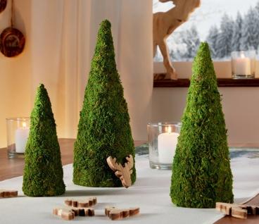 """3 Mooskegel """" Natur"""", grün, 15 20 25 cm hoch, Tisch Fenster Deko Pyramide Kegel"""