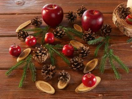 """Deko Set """"Äpfelchen"""" Holz Herbst Winter Weihnachten rustikal echt & künstlich"""