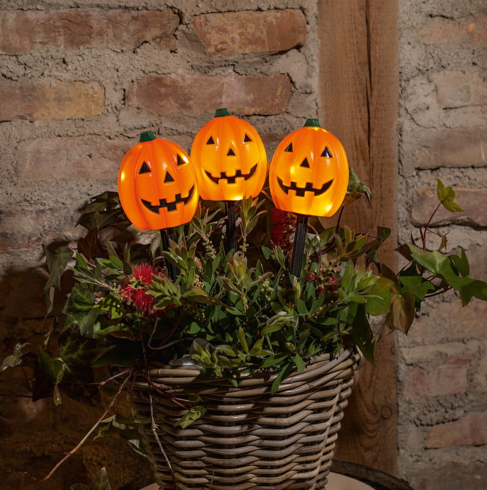 3 Led Garten Stecker Halloween Grusel Kurbis Mit Beleuchtung Beet Deko Sticker Kaufen Bei Come4buy Gmbh