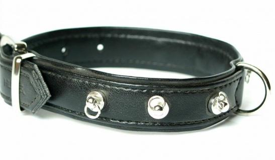 "Hunter Art Leder Hunde Halsband "" Modern Art"" schwarz Gr. S 40 cm Halsung"