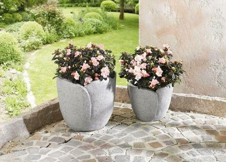 2er Set Blumen Töpfe, Blüten Form, Stein Optik grau, Pflanz Topf Kübel Pflanzer