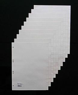 100x HETZEL Papier Register chamois 12 tlg. blanko A4 aus Tauenpapier 110 g/m²