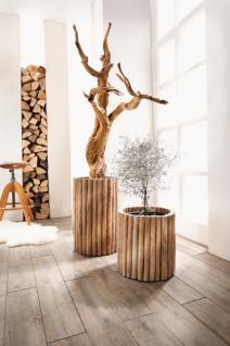 bertopf holz g nstig sicher kaufen bei yatego. Black Bedroom Furniture Sets. Home Design Ideas