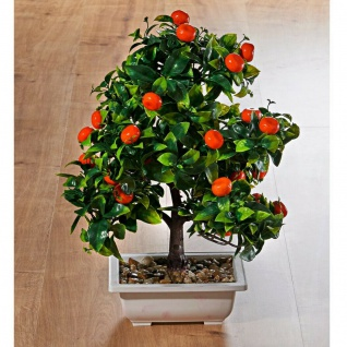 künstlicher Mandarinen Bonsai Baum, 40 cm hoch, inkl. Schale, Kunst Zier Pflanze