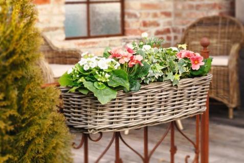 """Balkon Pflanzkasten """" Groß"""" aus Rattan, mit Halterung, Blumen Pflanz Korb Kasten"""