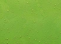 """Küchen Rückwand """" Wassertropfen"""" Glas grün, 90x65 Herd Spüle Spritz Schutz Platte"""