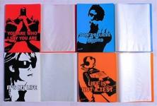 20x REXEL Sichtbuch in 4 Farben, je 20 DIN A4 Hüllen für 40 Blatt Sichtmappe
