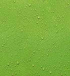"""Küchen Rückwand """" Wassertropfen"""" Glas grün, 60x65 Herd Spüle Spritz Schutz Platte"""