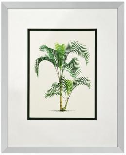Casa Padrino Bilder / Kunstdruck 4er Set Palmen Mehrfarbig 43 x H. 53 cm - Luxus Deko - Vorschau 3
