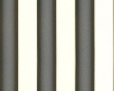 Versace Designer Barock Tapete Home Collection 935462 Jugendstil Vliestapete Vlies Tapete Breite Streifen Schwarz Weiß