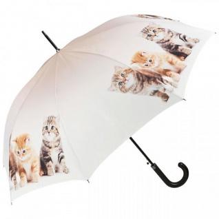 Designer Regenschirm Motivschirm mit Katzenkinder - Eleganter Stockschirm - Luxus Design - Automatikschirm