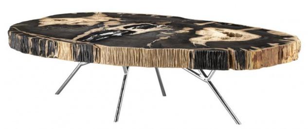 versteinertes holz g nstig online kaufen bei yatego. Black Bedroom Furniture Sets. Home Design Ideas