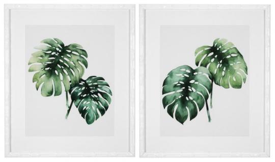 Casa Padrino Bilder / Kunstdruck Set Tropische Pflanzen Grün / Weiß 59 x H. 69 cm - Luxus Deko