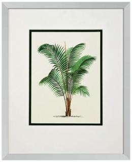 Casa Padrino Bilder / Kunstdruck 4er Set Palmen Mehrfarbig 43 x H. 53 cm - Luxus Deko - Vorschau 5