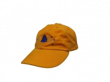 Fox Sktaeboard Cap Orange X-Mas