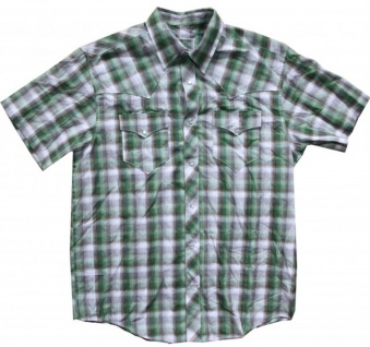 Fallen Skateboard Hemd Green/Grey/White Plaid