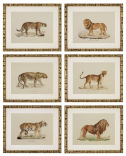 Casa Padrino Deko Bilder Set Löwen Tiger Jaguare Antik Gold 54 x H. 44 cm - Luxus Wanddekoration