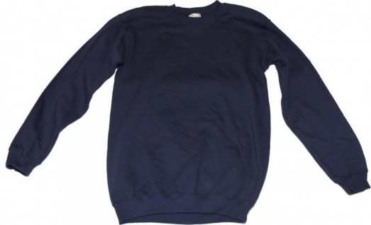 Gildan Skateboard Ultra Cotton sweater Blue