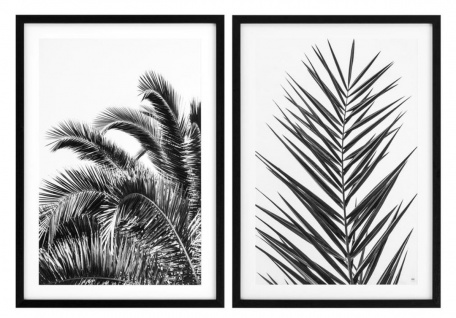 Casa Padrino Luxus Druck Set Palmenblätter 74, 5 x H. 104, 5 cm - Luxus Bilder & Accessoires