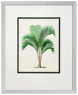 Casa Padrino Bilder / Kunstdruck 4er Set Palmen Mehrfarbig 43 x H. 53 cm - Luxus Deko - Vorschau 2