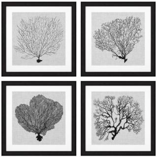 Casa Padrino Bilder 4er Set Seefarn Schwarz / Weiß / Grau 61, 5 x H. 61, 5 - Luxus Kunstdrucke mit Holzrahmen