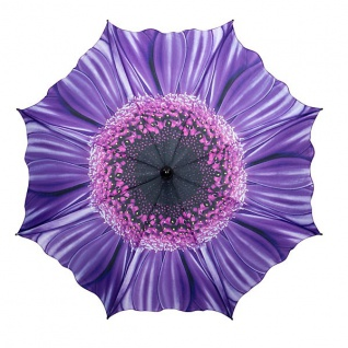 MySchirm Designer Regenschirm mit Blumenmotiv in lila - Eleganter Stockschirm - Luxus Design - Automatikschirm - Vorschau 2