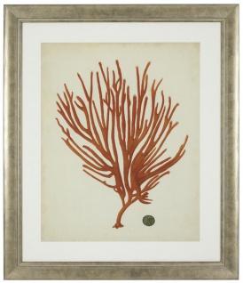 Casa Padrino Bilder / Kunstdruck 6er Set Korallen Antik Rot / Antik Silber 57, 5 x H. 68 cm - Luxus Deko - Vorschau 5
