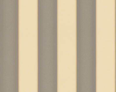 Versace Designer Barock Tapete Home Collection 935465 Jugendstil Vliestapete Vlies Tapete Breite Streifen Creme Grau