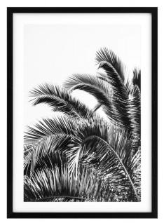 Casa Padrino Luxus Druck Set Palmenblätter 74, 5 x H. 104, 5 cm - Luxus Bilder & Accessoires - Vorschau 2