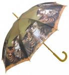 MySchirm Designer Regenschirm mit Katzenkinder auf grünem Untergrund - Eleganter Stockschirm - Luxus Design