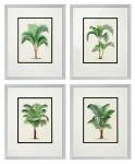 Casa Padrino Bilder / Kunstdruck 4er Set Palmen Mehrfarbig 43 x H. 53 cm - Luxus Deko