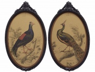 Casa Padrino Barock Wandbilder Set Vögel Mehrfarbig / Schwarz 38 x H. 63, 7 cm - Kork Bilder mit Polyresin Rahmen im Barockstil