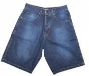 Iriedaily Skateboard Herren Shorts Blue