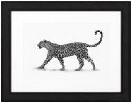 Casa Padrino Luxus Bild Leopard Schwarz / Weiß 93 x H. 73 cm - Kunstdruck mit Holzrahmen