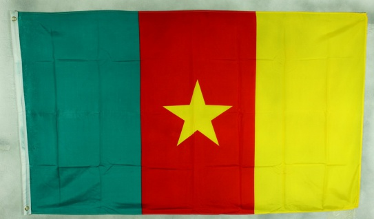 Flagge Fahne : Kamerun Kamerunflagge Nationalflagge Nationalfahne