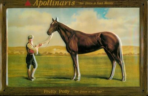 Blechschild Apollinaris Mineralwasser Pferd retro Schild Wasser Werbeschild