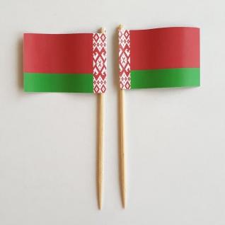 Party-Picker Flagge Weißrussland Papierfähnchen in Spitzenqualität 50 Stück B...