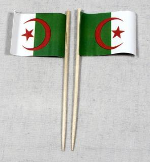 Party-Picker Flagge Algerien Papierfähnchen in Spitzenqualität 50 Stück Beutel
