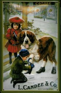 Blechschild Candee Schuhe Bernhardiner Hund Werbeschild Schild Nostalgieschild
