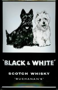 Blechschild Black & White Scotch Whisky Hunde retro Schild Nostalgieschild