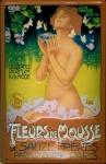 Blechschild Fleurs de Mousse Parfum Paris Frau Blätter Schild retro Werbeschi...