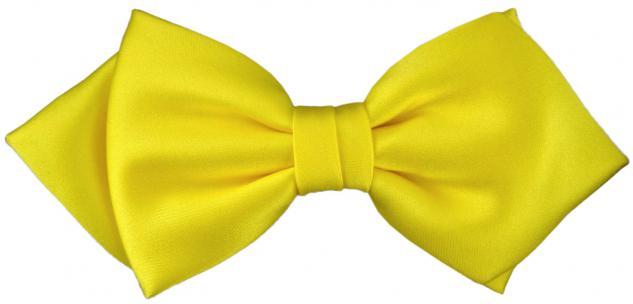 vorgebundene TigerTie Spitzfliege Schleife in gelb Einfarbig + Geschenkbox