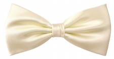 TigerTie Designer Seidenfliege in champagner elfenbein Uni einfarbig Satinglanz