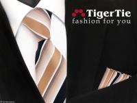 schöne TigerTie Krawatte + Einstecktuch in beige braun dunkelblau weiß gestreift
