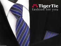 schöne TigerTie Krawatte + Einstecktuch in blau grau blaugrau silber gestreift