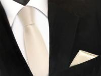 schmale TigerTie Schlips Krawatte + Einstecktuch in creme beige uni einfarbig