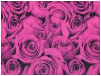 Multifunktionstuch in pink schwarz mit Rosenmuster - Schal - Schlauchtuch